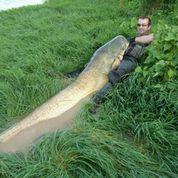 http://www.brunobrennsteiner.de/images/news-pics/1407Juli/klein/08.jpg